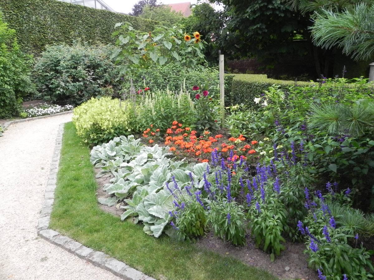 Tuinontwerp of tuinplan laten maken door tuinarchitect for Goedkoop tuinontwerp laten maken